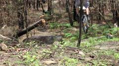 Teenage boy mountain biking in a forest. Stock Footage