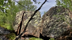 Large stone split in half between the trees. Stock Footage