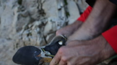 A young man putting on climbing shoes before going rock climbing. Stock Footage