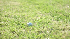 Lacrosse ball getting scooped off the grass, slow motion. Stock Footage