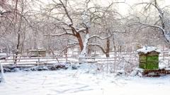 Snowfall on an apiary Stock Footage
