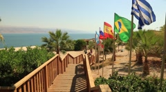 Multinational flags blowing in wind overlooking the Dead Sea Stock Footage