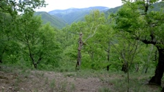 Panorama over mountains covered by forests deep and dark in a day with rain c Stock Footage