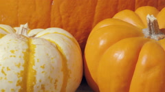 Macro Dolly In Towards Fall Pumpkins Stock Footage