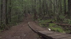 A mountain biker going off jumps in a forest on a mountain, super slow motion. Stock Footage