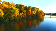 Amazingly beautiful autumn colors on tranquil waterfront with geese Stock Footage