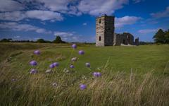 Late summer sunshine on the medieval Knowlton Church, Wimborne, Dorset Stock Photos
