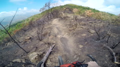 POV of a man mountain biking through a burned down European forest in the mounta Stock Footage