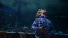 Shark Swims Above Little Boy In Aquarium Tunnel He Looks Up In Wonder And Awe Stock Footage
