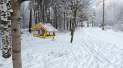 Mom and kid skiing in winter snowy park, Russia. Bird feeder hanging on tree Stock Footage