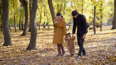 Young family the holidays walking in the autumn forest Stock Footage
