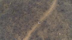 Aerial birdseye shot of young man mountain biking on a trail. Stock Footage