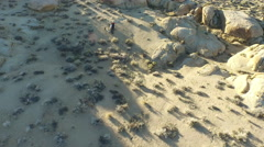 Aerial shot of a young man backpacking with his dog in a mountainous desert. Stock Footage