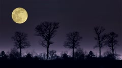 Landscape with the full moon Stock Footage