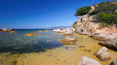 Tropical island with palm trees, Corsica, France Stock Footage