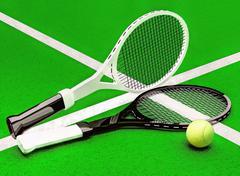 Tennis; rackets; sphere; court; green. Stock Illustration