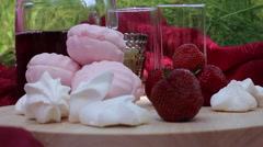 Fruit at the picnic Stock Footage