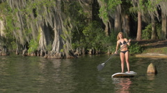 A young woman sup stand-up paddleboarding on a lake surrounded by trees. Stock Footage