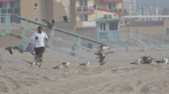 A young man barefoot running through a flock of seagulls on the beach , slow mot Stock Footage