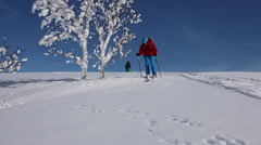 Skier skiing on snow covered mountain. Stock Footage