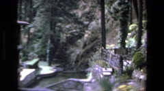 1972: lovely landscape with many types of vegetation and a source of water Stock Footage