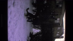 1972: dog playing in the snow MAZATLAN MEXICO Stock Footage