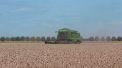 Combine harvester harvesting grain crops Stock Footage