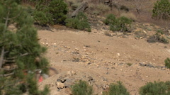 Teenage boy mountain biker crashing after going off a dirt jump, slow motion. Stock Footage