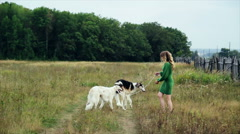 Girl in green dress with two Russian greyhounds Stock Footage