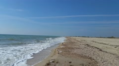 Sea gull walking on the beach Stock Footage