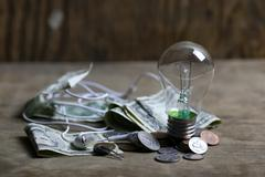Coins and crumpled money tungsten lamp filament Stock Photos