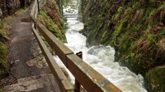 Waterfall in the black forest in Germany Stock Footage
