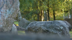 Park large stones. Early autumn. moving the camera Stock Footage