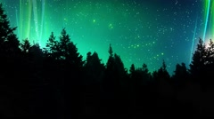 Aurora Lights Above the Pines 4K Loop Stock Footage