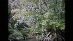 1958: peaceful lake in jungle PENNSYLVANIA Stock Footage