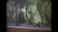1964: fishes swimming in the aquarium with lot of aquatic plants PHILADELPHIA Stock Footage