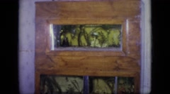 1964: view of several homemade aquariums built into the wall. PHILADELPHIA Stock Footage