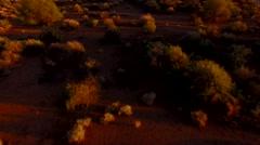 4K Aerial Desert Sunset Creates Long Shadows Brush Cactus Stock Footage