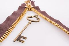 Key through a zipper Stock Photos