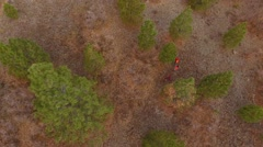 Aerial dolly shot of a family walking through the woods hunting Stock Footage