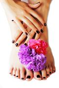 Manicure pedicure with flower close up isolated on white perfect shape hands spa Stock Photos