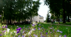 Monastery garden, forget-me-nots, assumption refectory Church. Stock Footage