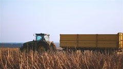 Tractor truck in harvested sunflowers field HD video. Farm machine vehicle Stock Footage