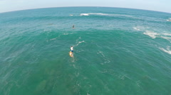 Aerial view of a man sup stand-up paddleboard surfing in Waimea, Hawaii. Stock Footage
