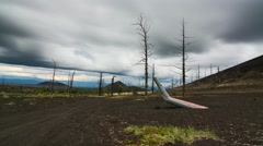 """Time Lapse. Dead forest. """"Helicopter"""" Tourist parking. Kamchatka, Russia. Stock Footage"""