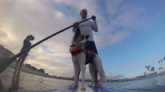 POV of a man, son and his dog paddling an SUP stand-up paddleboard on a lake, ti Stock Footage
