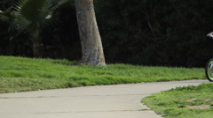 A boy riding a bike in a park. Stock Footage