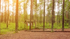 Two little beautiful girls walk on swamp, Estonia Stock Footage