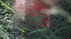 Detail of tall grass and a man stomping out a smokey fire. Arkistovideo