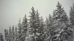 Snow covered trees on a mountain at a ski resort Stock Footage